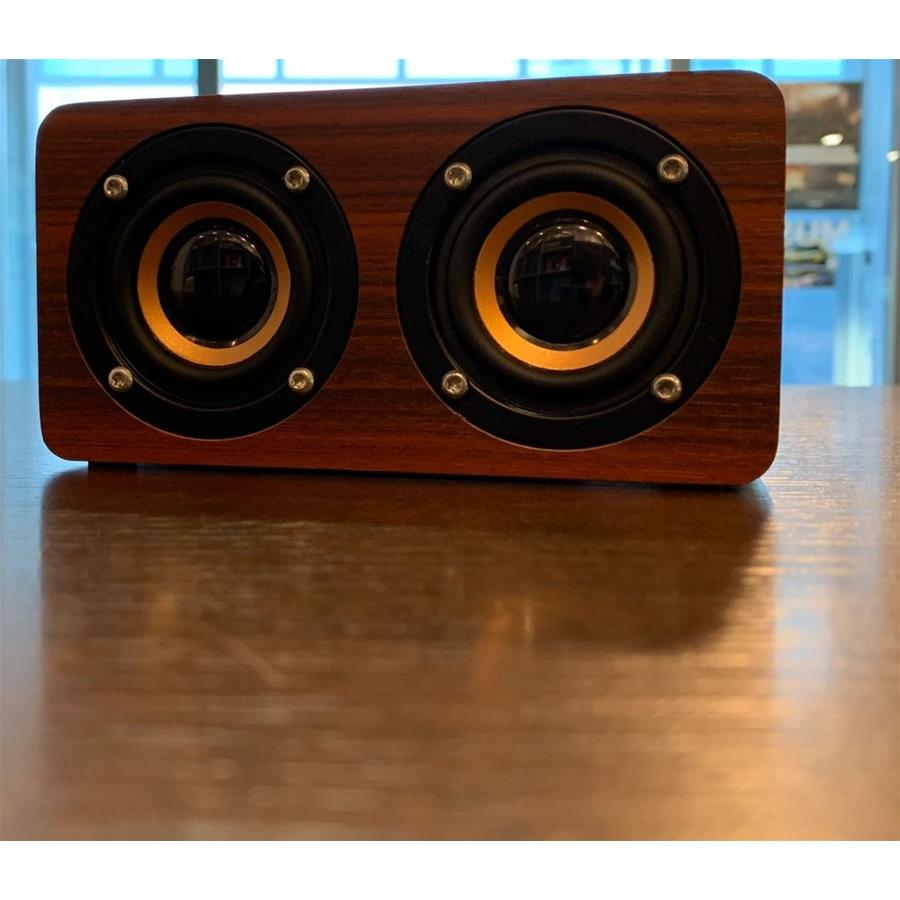 CASSA MONITOR OQAN QBT-100 BT SPEAKER BLUETOOTH WOOD